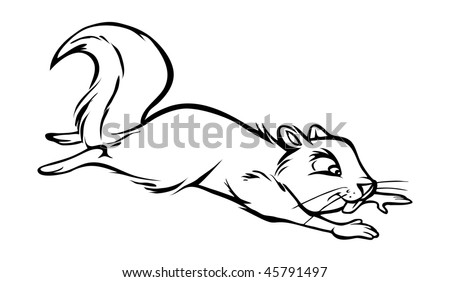 Outline of a Squirrel http://www.shutterstock.com/pic-45791497/stock-vector-cartoon-vector-outline-illustration-squirrel-jumping.html