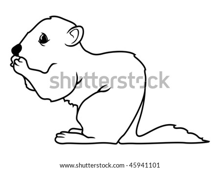 Outline of a Squirrel http://www.shutterstock.com/pic-45941101/stock-vector-cartoon-vector-outline-illustration-squirrel-nuts.html