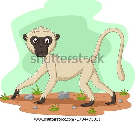 cartoon vervet monkey in the