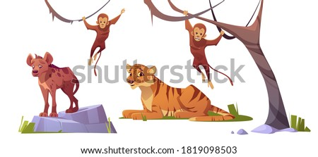 Cartoon wild animals tiger, monleys and hyena, jungle inhabitants predators and herbivorous in zoo park or safari outdoor area. Beasts in fauna isolated on white background, vector illustration, set Сток-фото ©