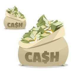 Cash Bag. Money in the bag. Sack of money