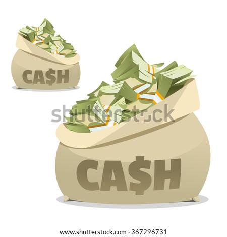cash bag money in the bag