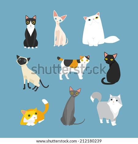 Shutterstock cat