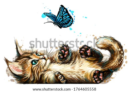 Cat. A kitten is playing with a butterfly. Wall sticker with the image of a blue-eyed Maine Coon kitten catching a butterfly in a watercolor style.