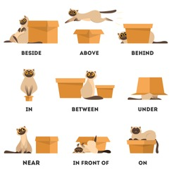Cat and box set. Learning preposition concept. Animal above and behind, near and under the box. Isolated vector educational illustration in cartoon style
