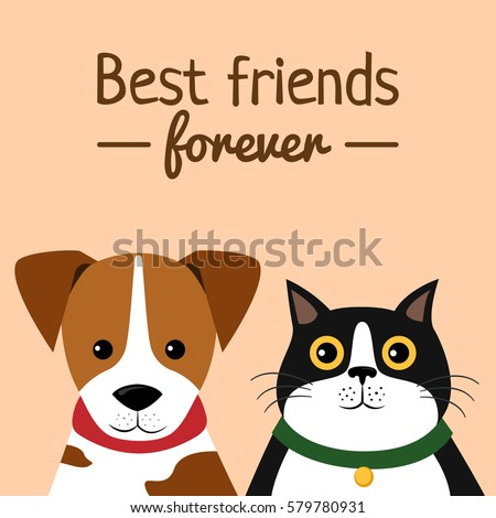 cat and dog characters best