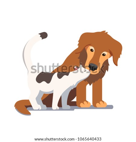 cat and dog friendship and
