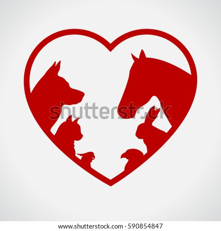 cat and dog horse and rabbit