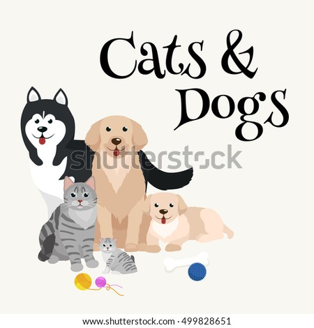 cat and dog together lying