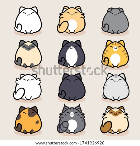 cat breed cute pet portrait