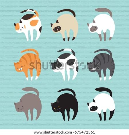 cat breed set  vector