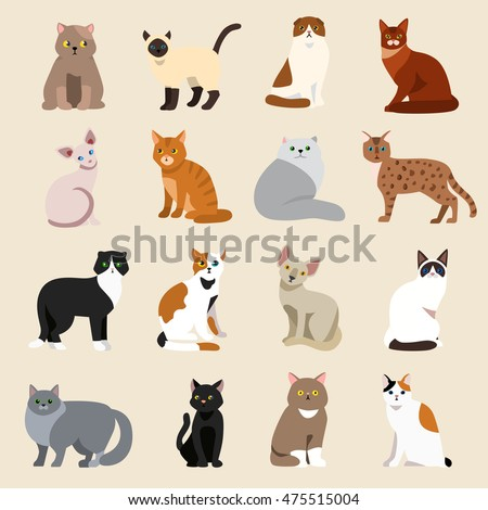 Cat breeds cute pet animal set vector illustration