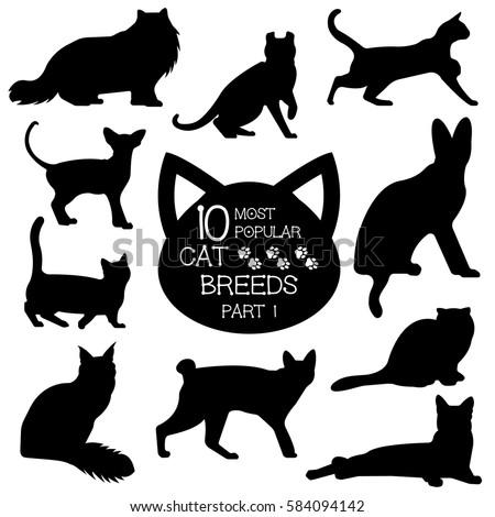 cat breeds set cats icons cat