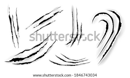 Cat claw scratches on paper. Black torn slashes from wild animal, tiger, bear or lion paws isolated on white background. Vector realistic sharp talons marks, trails and scrapes from monster nails Photo stock ©