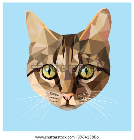 cat colorful low poly design
