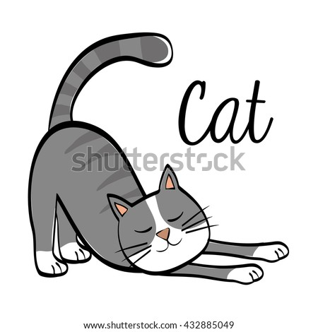 cat design animal concept