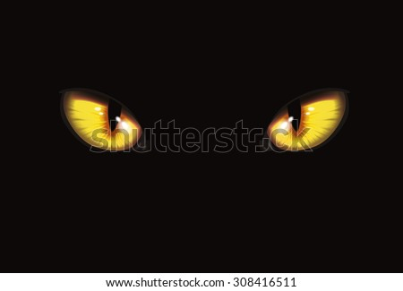 cat eyes on black background