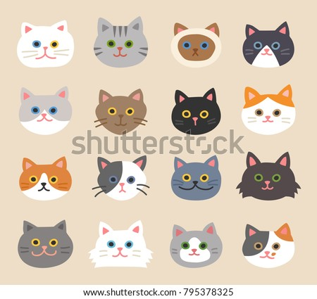 cat faces with various breeds
