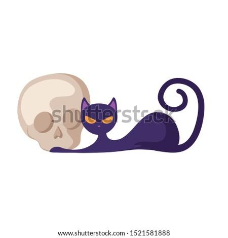 cat feline animal of halloween with skull vector illustration design