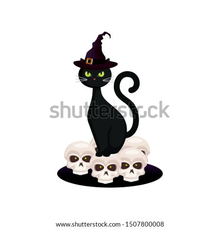 cat feline halloween with hat witch and skulls