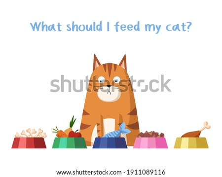 Cat food. Choosing the right diet for your cat. Pet care. Allowed and prohibited foods for a cat. Isolated on white background. Stock vector illustration