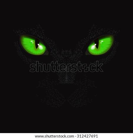 cat green eyes in the dark