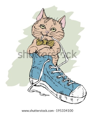cat hipster sits in shoe
