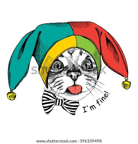 cat in a april fools' hat