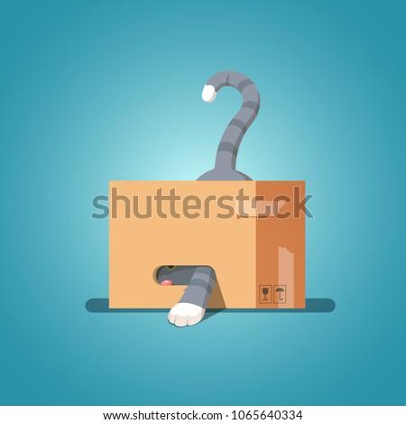 cat in a cardboard box pulled