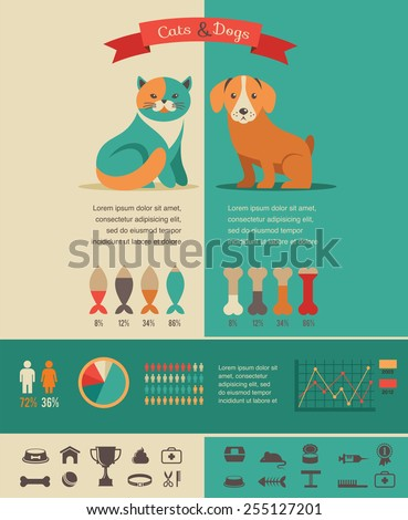 cat infographics with vector