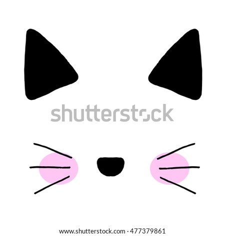 cat on a white background cat