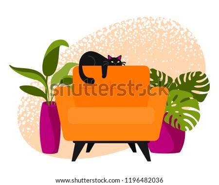 cat on armchair vector