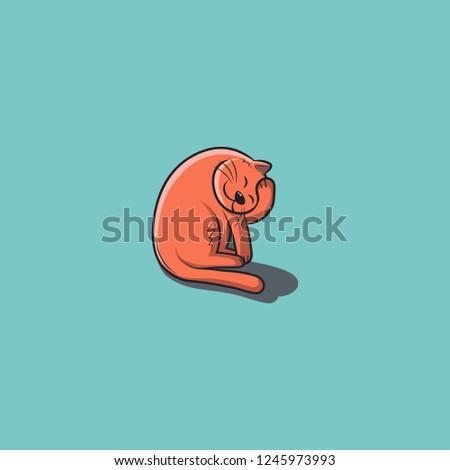 cat on blue background orange
