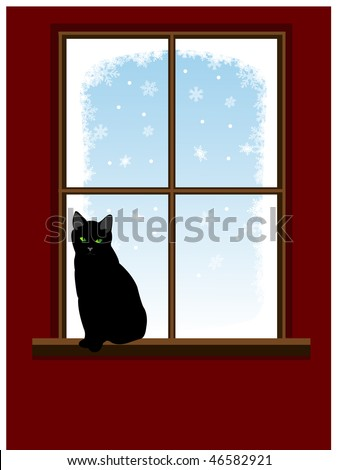 cat on window