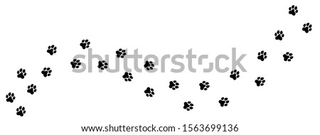 Cat or dog paw. Pet foot trail print. Step shape. Vector sole silhouette. Photo stock ©