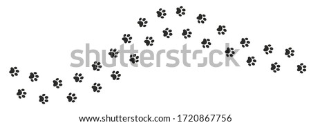 Cat paw. Pet foot trail print. Step shape. Vector illustration Photo stock ©