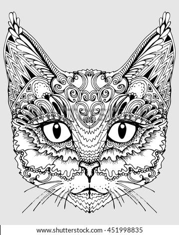 cat portrait of a cat cat's