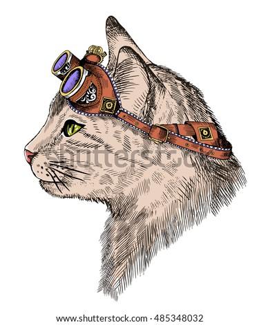 cat portrait steam punk with