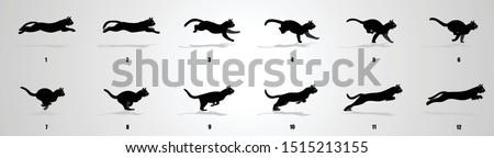 cat run cycle animation
