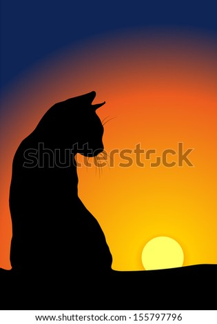 Cat\'s silhouette against sunset background