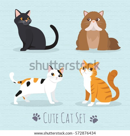 Cat Set, with white , grey ,orange , brown cat Cute cats flat icons. Vector Illustration Cartoon