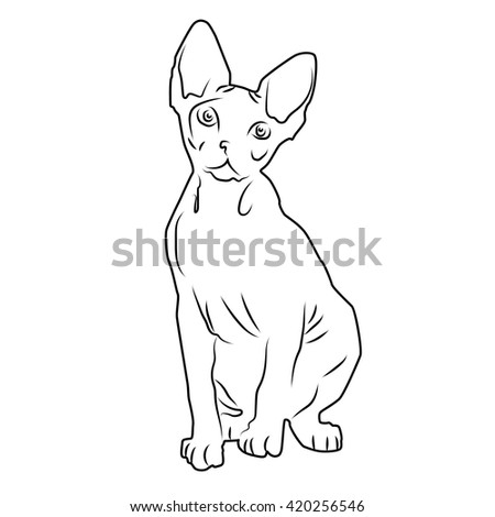 cat silhouette illustration of