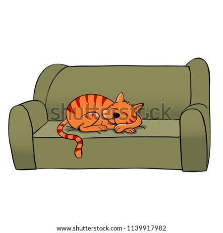Stock Photo cat sleeping on the couch