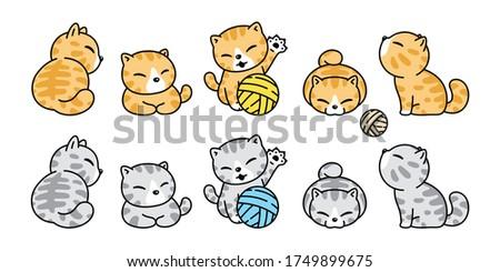 cat vector icon calico kitten