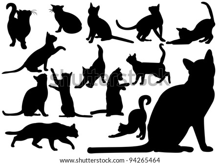 stock-vector-cats