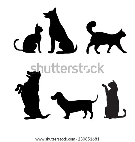 cats and dogs set  vector