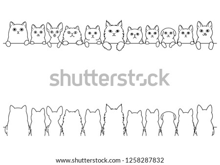 cats border set  front side and