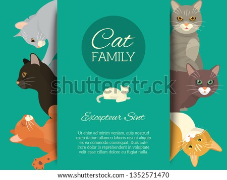 cats family show banner