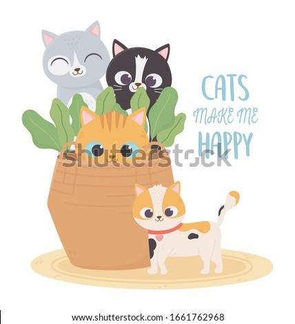 cats make me happy  pets cats