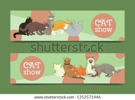 cats show banner grooming or